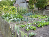 Organic gardening is part of sustainable living, and making your way in rural America